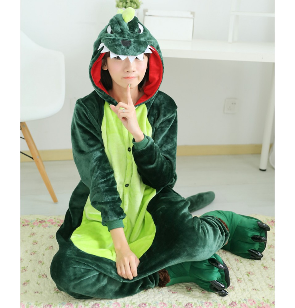 Dinosaur Onesies Pajamas Unisex Flannel Kigurumi Onesies Winter Animal Pajamas For Adults